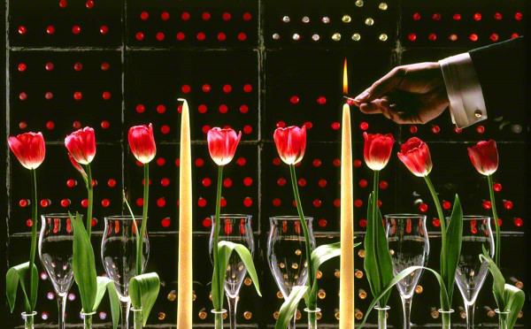 Tulips1-600x372_DM