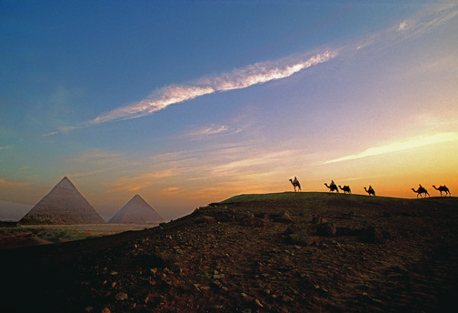 camelsbypyramids