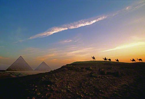 camelsbypyramids1_DM