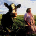 lady-with-the-cow-600x399_DM thumbnail