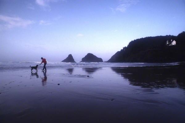 beachDM