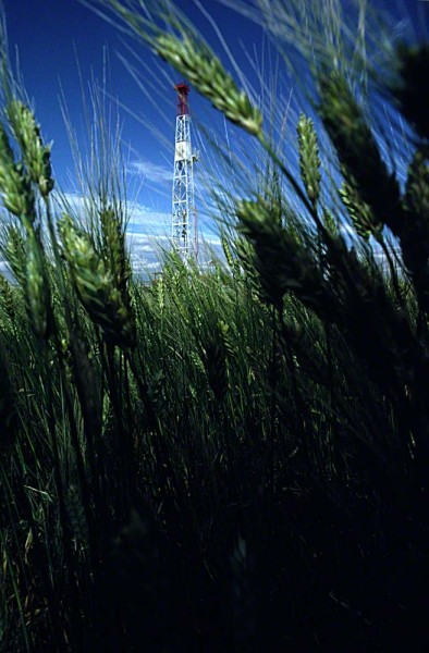 oilrigthroughwheat0103