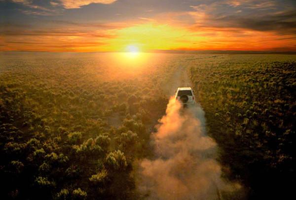 car-into-sunsetDM