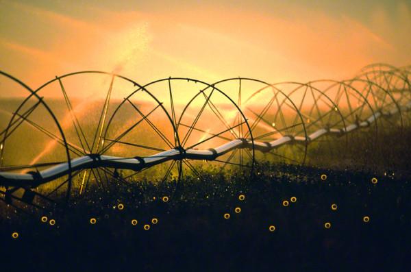irrigationwheelsDM